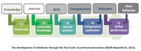 Competency Assessment for Responsible Leadership (CARL