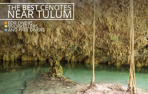 The Best Cenotes in Tulum, Mexico (to Snorkel and Dive in
