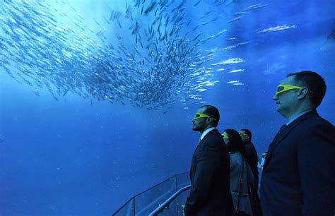 National Geographic Encounter: Ocean Odyssey Announces